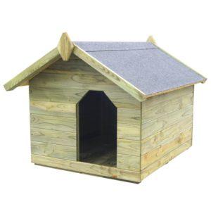 koerakuut avatava katusega