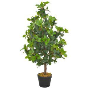 kunsttaim loorberipuu potiga