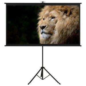 projektori ekraan statiiviga