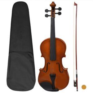 viiulikomplekt poogna ja lõuatoega