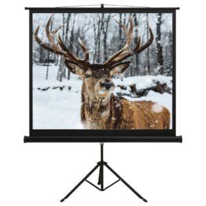 projektori ekraan alusega