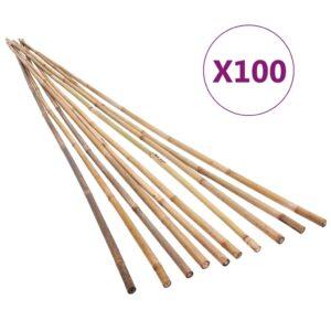 bambusvaiad 100 tk 120 cm