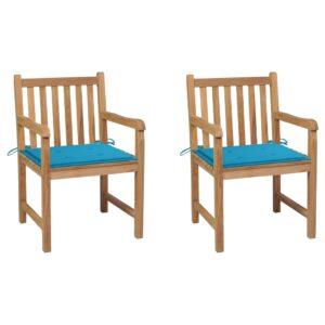 aiatoolid 2 tk siniste istmepatjadega